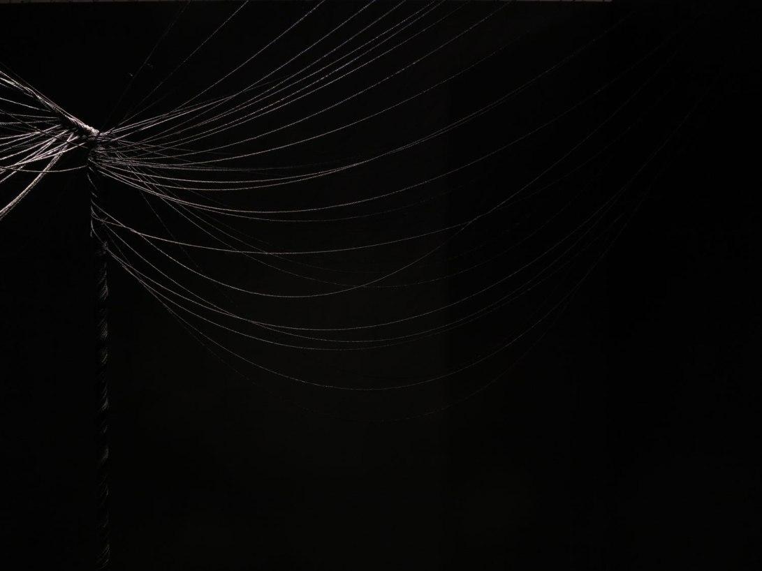 web-IMG_5316